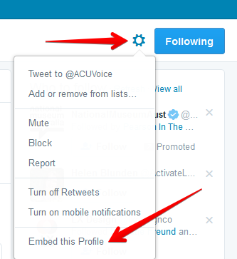 Click on the Settings wheel at the top right of the page to see the options. At the bottom is Embed this Profile